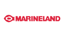marine-sm